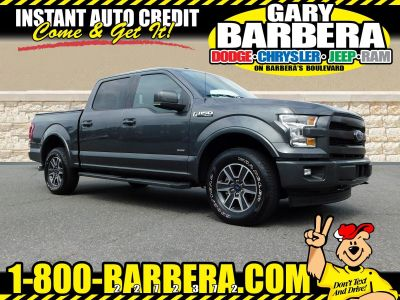 2017 Ford F-150 (Magnetic)