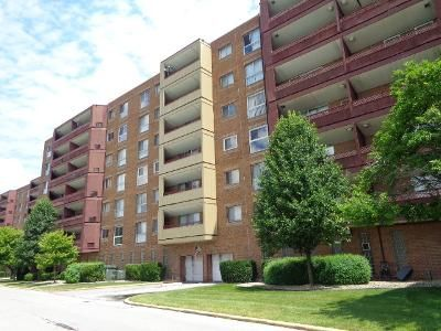 2 Bed 2 Bath Foreclosure Property in Calumet City, IL 60409 - Park Ave Apt 620