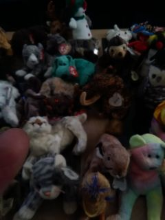 Tons of Beanie babies and beanie buddies