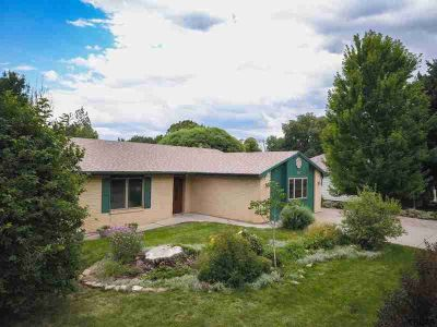 336 N Cottonwood Avenue CANON CITY, Must see to appreciate!