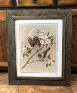 Heavy rustic barnwood-like frame with glass with bird print 22 x 26 - probably from 1970 s