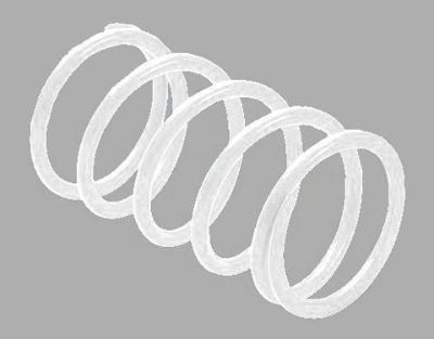Purchase ERLANDSON CLUTCH SPRING ,WHITE PATV6 motorcycle in Ellington, Connecticut, US, for US $24.95
