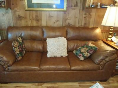 Queen leather sofa bed