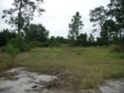 Land for Sale by owner in Saint Cloud, FL