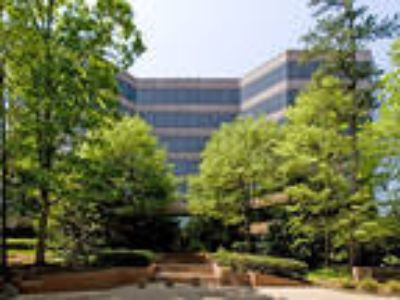 Raleigh, Class A surburban office building situated on 4.09