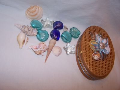 Shell Decor Heavy Glass Shells and Old Sea Shells