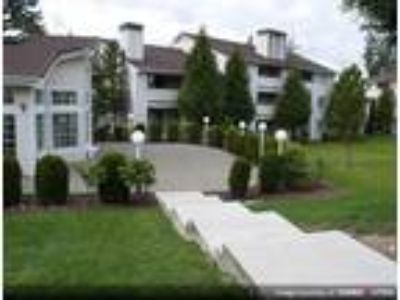 Clearwater Ridge Apartments - 2 BR-2 BA