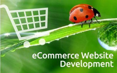 Byteoi- Website Development Company | Ecommerce Website Development