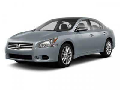 2011 Nissan Maxima 3.5 SV (Winter Frost Pearl)