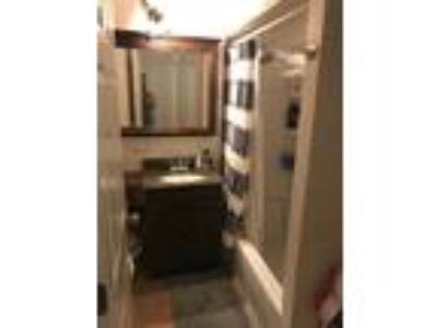 Roommate wanted to share Three BR One BA Apartment...