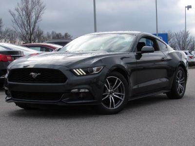 2016 Ford Mustang 2dr Fastback EcoBoost (Magnetic Metallic)