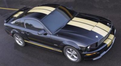 """Sell Hertz GT-H Dual 9"""" Gold Matching Stripe Kit, Fits 2005-2009 Ford Mustangs motorcycle in Surprise, Arizona, US, for US $189.99"""