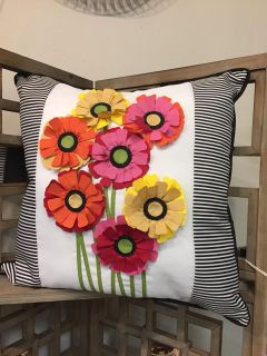Color pillow- NWT