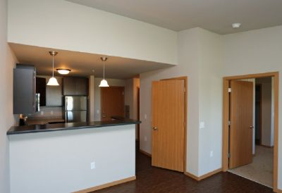 $995 One Bedroom Apartment w/ Washer/Dryer, Cat-Friendly