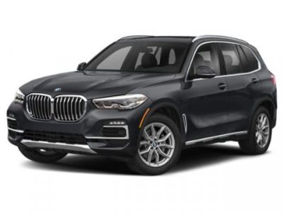 2019 BMW X5 xDrive40i (Arctic Grey Metallic)