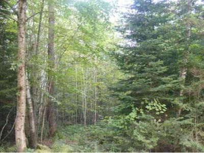 0 Reed Road Lancaster, (101) DIRECT Snowmobile Trail Access!