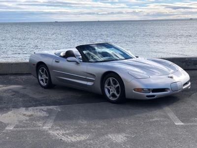 2004 Chevrolet Corvette Base (Machine Silver Metallic)