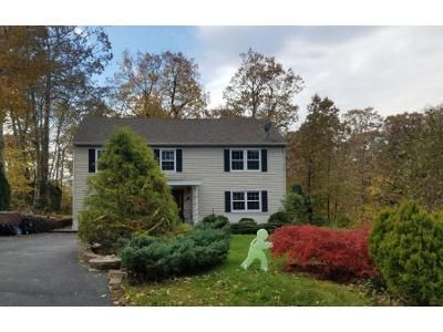 Preforeclosure Property in Hewitt, NJ 07421 - Palmyra Rd