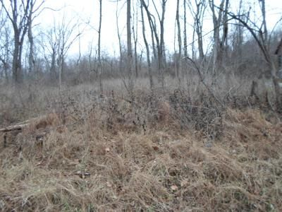 Foreclosure Property in Warsaw, KY 41095 - Hillandale Rd