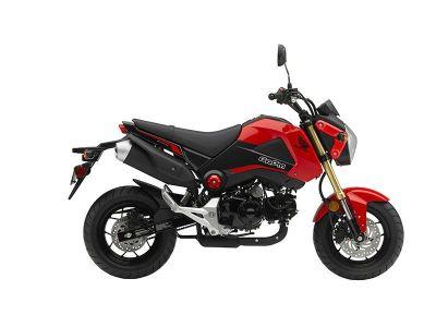 2015 Honda Grom Sport Motorcycles Hicksville, NY