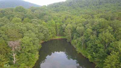 0 Tamarack Jasper, Exceptional Lake front property located