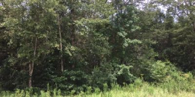 Partially Wooded Lot in Wakefield Place, Mobile