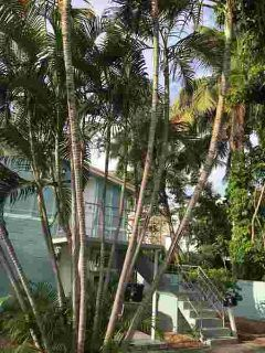 139 SE 7th Avenue #4 Delray Beach Two BR, ''Old Florida Charm''