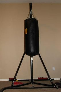 Everlast Punching Bag & Stand w/gloves & speed bag attachment