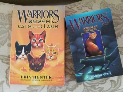 Warriors cats of the clan series 2 book lot