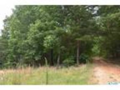 Fort Payne Real Estate Land for Sale. $6,000 - Neil Colbert of