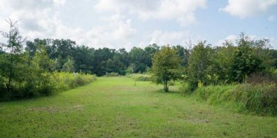10 Acres in Foley Off HWY 59!