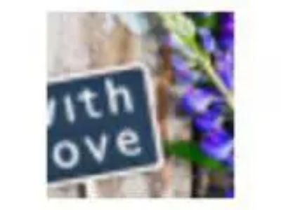 Love Your Life Series - German New Medicine (Thu Jun th pm