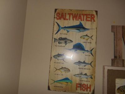 Saltwater Fish Picture