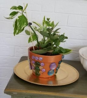 Hand designed pot with plant.
