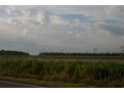 Vacant Land for Sale: I-10 frontage near mile marker 76 in Acadia Parish