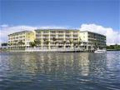 St Petersburg Waterfront Condo On Boca Ciega Bay - Condo