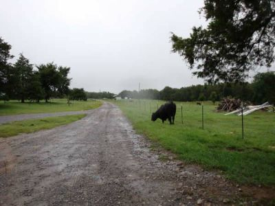 Commercial Lands  Business Breeder Hen Farm For Sale by Owner  (Judsonia, AR)