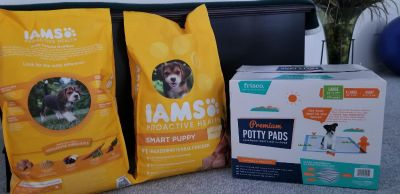 Puppy Kibble and potty pads