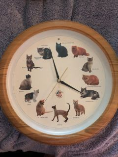 For the CAT LOVER.