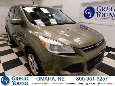 2013 Ford Escape SE (Green)