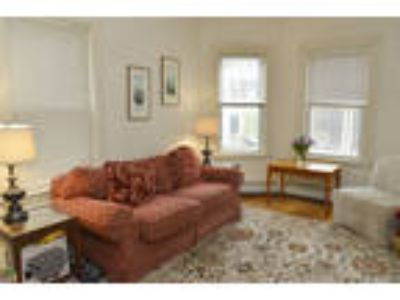 Excellent Location in JP Near Stonybrook T stop. Pet friendly.
