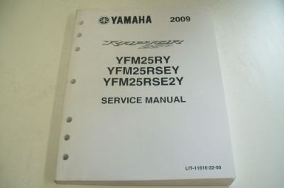 Find YAMAHA ATV DEALER TECHNICAL SERVICE MANUAL 2009 YFM25RY/SEY/E2Y RAPTOR 250 motorcycle in Sunbury, Pennsylvania, United States, for US $59.95