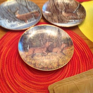 Set of 3 beautiful Danbury Mint 1992 Friends of the Forest plates. Excellent condition. Gold rim.