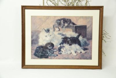 Set of 4 Framed, matted and glass Cat prints