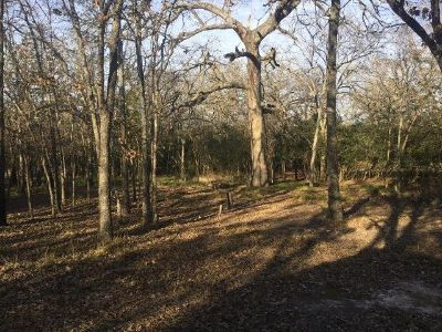 1.21 Acres, wooded off water lot wRV