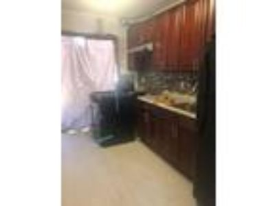Full House for rent... Completely renovated... Great Deal....