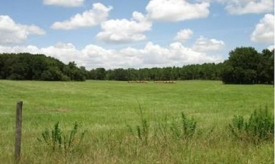 (◕‿◕) Beautiful 18.5 acres in Equestrian acreage realtors wellcome