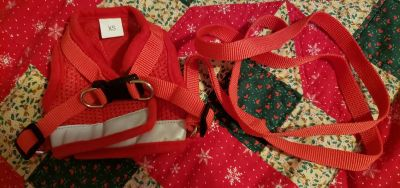 Puppy Size Reflective Harness and Leash