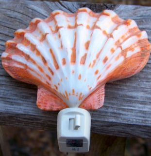 LARGE Scallop Shell NIGHTLIGHT