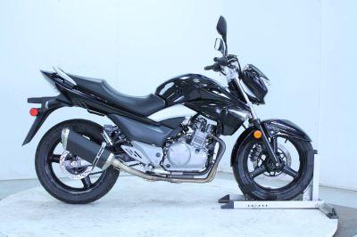 2013 Suzuki GW250 Standard/Naked Motorcycles Adams, MA